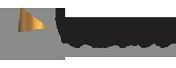 VDMV Logo
